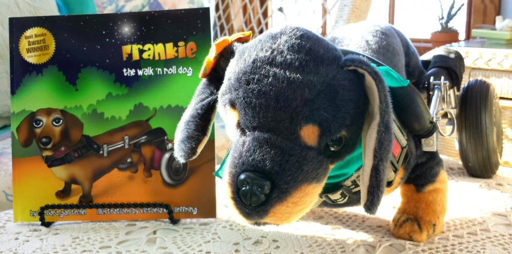 Frankie the Walk 'N Roll Dog Heads Back to School - In a New Way.