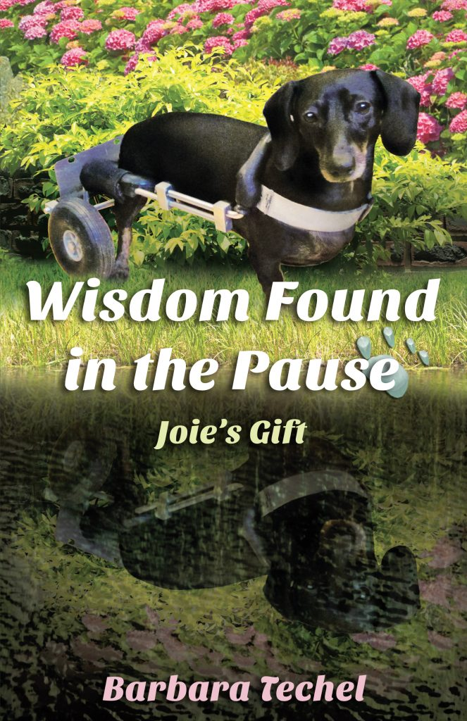 This is it! The Cover for My New Book: Wisdom Found in the Pause - Joie's Gift