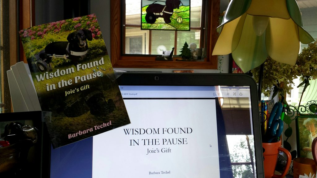 "Update on My New Book: ""Wisdom Found in the Pause- Joie's Gift."" Getting Closer to Publication!"