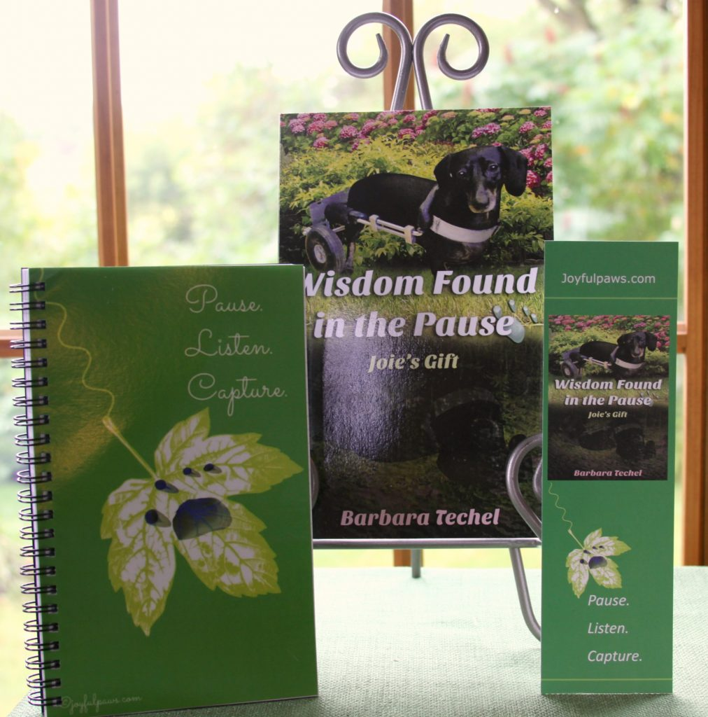"Accepting orders thru tomorrow only (Friday) for Special Edition Gift Package of My New Book, ""Wisdom Found in the Pause"""