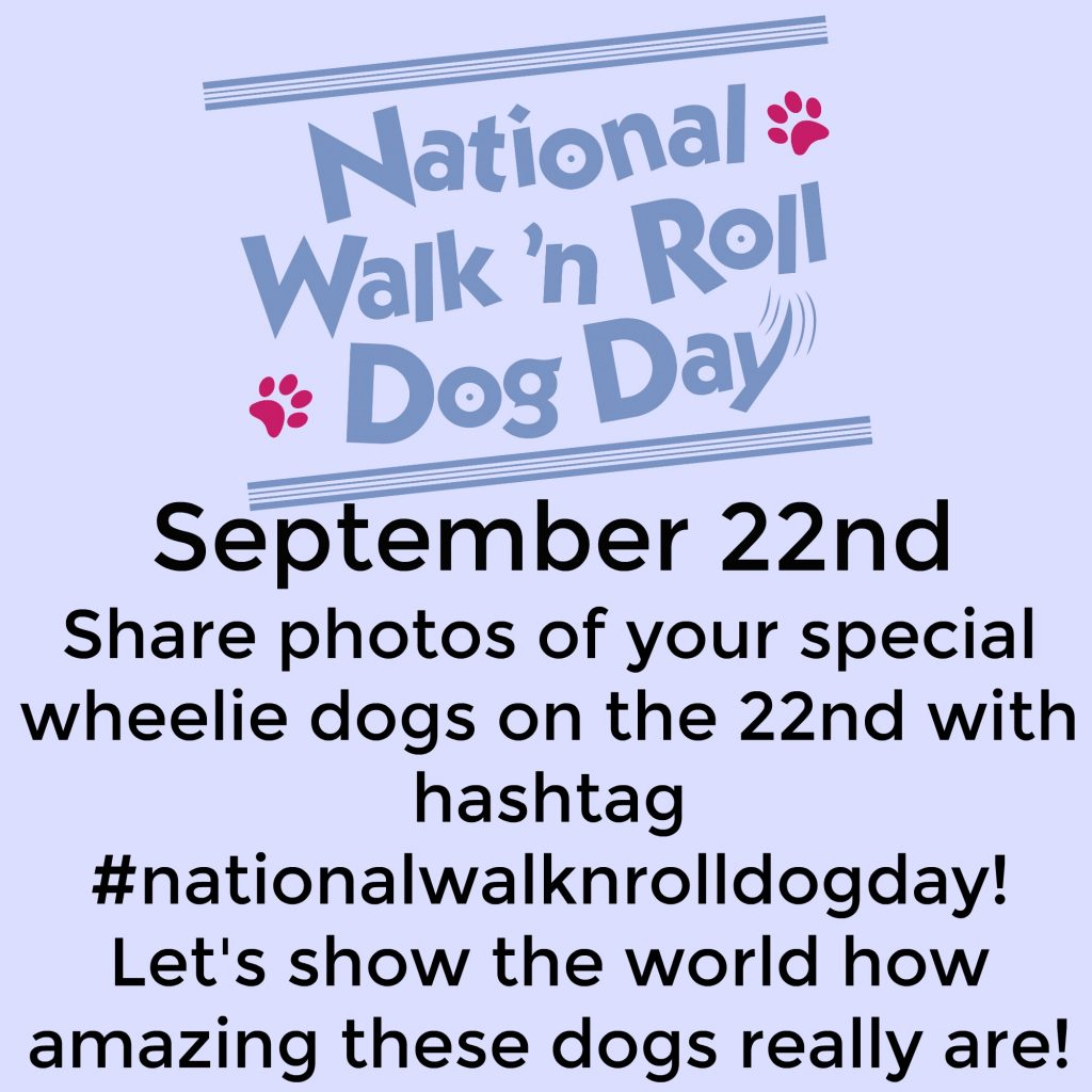 September 22 - Annual Celebration of National Walk 'N Roll Dog Day - Will You Help Me Spread the Word?