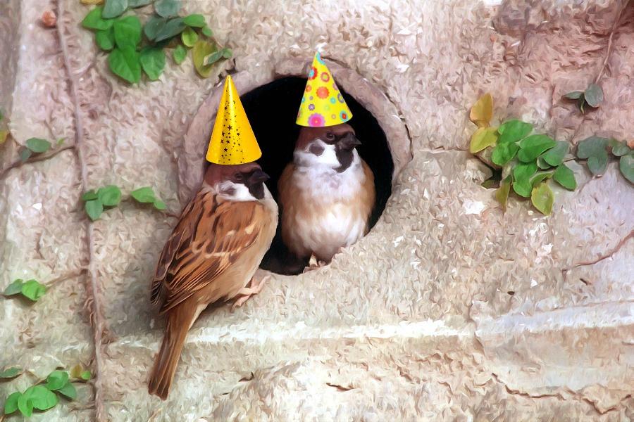 Happy Birthday to My Special Sparrow, John