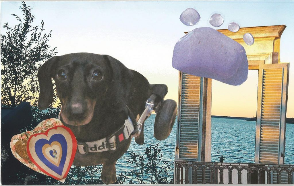 Honoring a Pet Through Collage and Journaling
