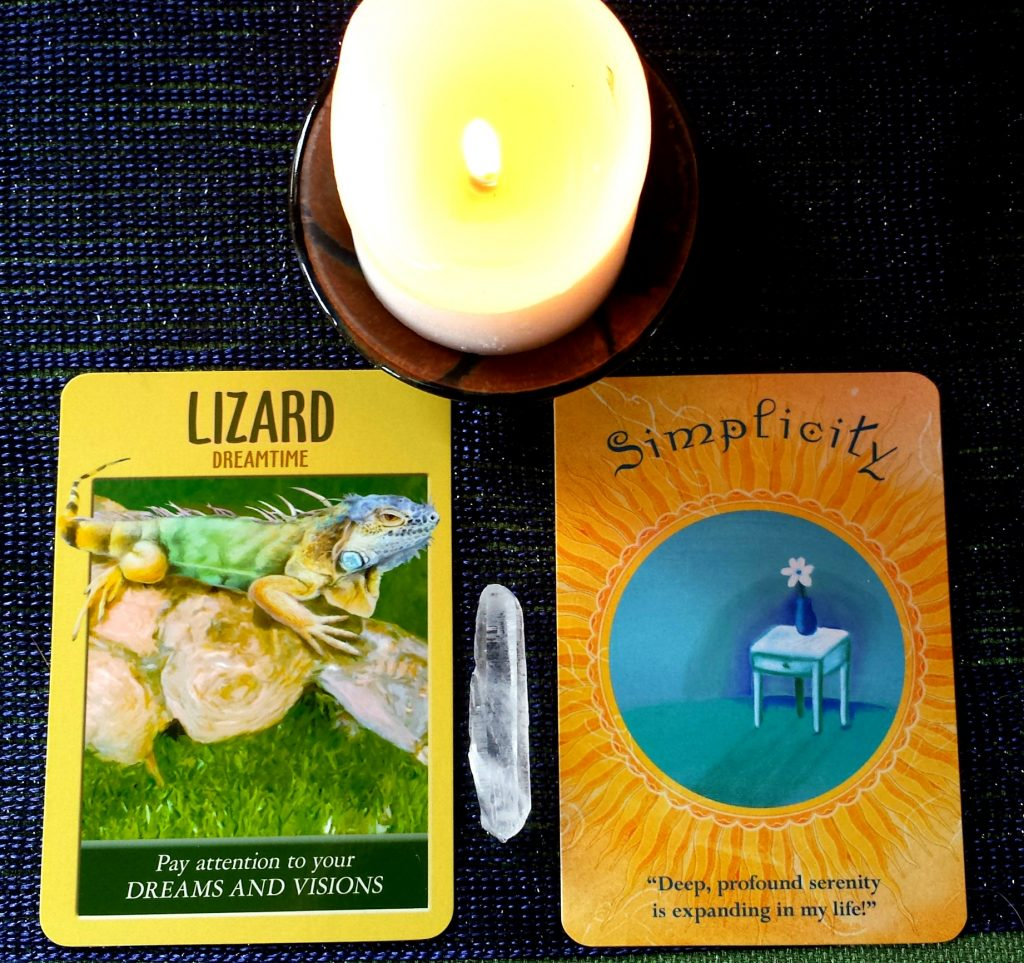 Wisdom from the Oracle - What Do Lizard and Simplicity have to Teach Us?